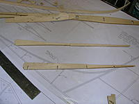 Name: DSCN4356.jpg