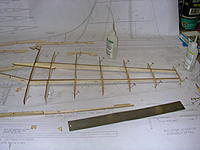 Name: DSCN4371.jpg