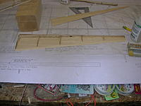 Name: DSCN4377.jpg