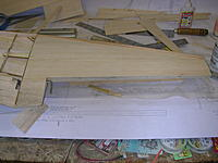 Name: DSCN4398.jpg
