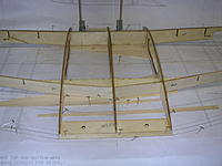Name: DSCN4415.jpg