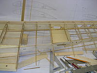 Name: DSCN4428.jpg