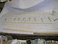 Name: DSCN4440.jpg