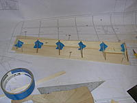 Name: DSCN4447.jpg