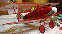 Name: albatros3.jpg