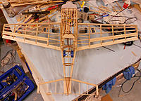 Name: EdgeBonesa.jpg