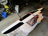 Name: IMG_0218 hole wing small.jpg