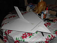 Name: SANY0696.jpg