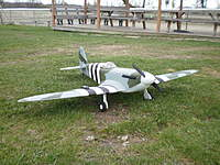Name: P4190116.jpg