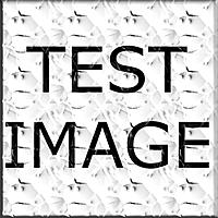 Name: Test Image.jpg