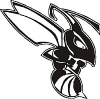 Name: hornet black.jpg