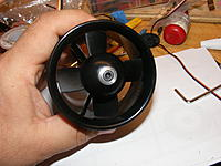 Name: DSCF5199.jpg