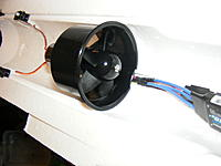 Name: DSCF5582.jpg