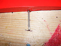 Name: DSCF5593.jpg