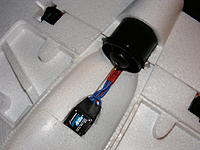 Name: DSCF5934.jpg