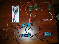 Name: ESCs.jpg