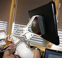Name: iPad Mini Rear.jpg