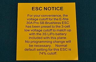 <b>ESC warning</b>