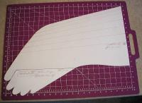 Name: SOARBD37.jpg