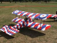 Name: eastnormodelshow.shelseywalsh.lamablackmore 001.jpg