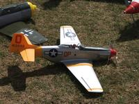 Name: eastnormodelshow.shelseywalsh.lamablackmore 002.jpg