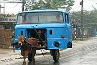 Name: Donkey Truck.jpg