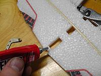 Name: S1160019.jpg