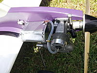 Name: Cobra_005.jpg