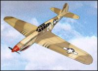 Name: p-40s&e.jpg