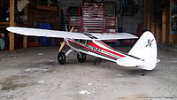 Name: funcub 011.jpg