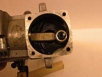 Name: DSCN7599.jpg