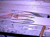Name: DSCN0031.jpg