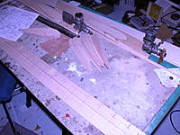 Name: DSCN0020.jpg