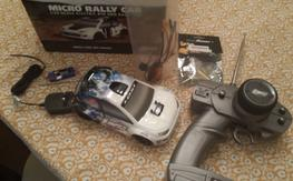 Losi: 1/24 Micro Rally brushed, with BL motor and ESC.