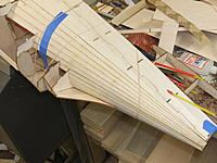 Name: DSCF3694.jpg