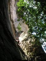 Name: P9110012.jpg
