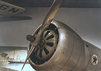 Name: Nose.jpg
