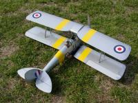 Name: Tiger Moth 001.jpg
