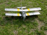 Name: Tiger Moth 002.jpg