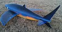 Name: Flying_Shark_1.jpg