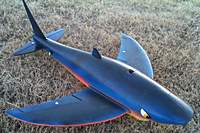 Name: Flying_Shark_2.jpg