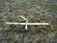 Name: 100_9242.jpg