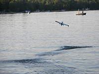Name: 100_8230_6.jpg Views: 83 Size: 81.0 KB Description: Look out fishermen. Not even close.