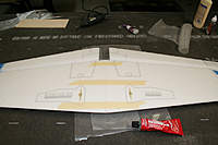 Name: IMG_9177.jpg
