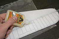 Name: IMG_9204.jpg
