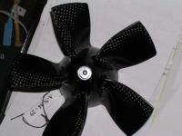 Name: P1040058.jpg