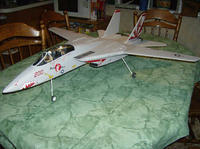 Name: f-14 on gear 5.jpg
