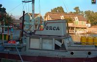 Name: orca1980.jpg