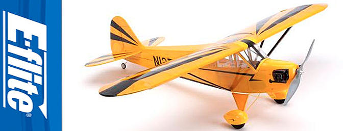The new Clipped Win Cub Arf from E-flite.
