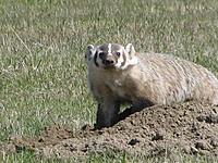 Name: IMG_1673.jpg